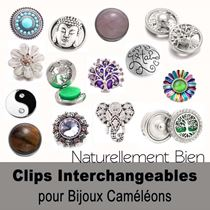8. Collection Clips Interchangeables