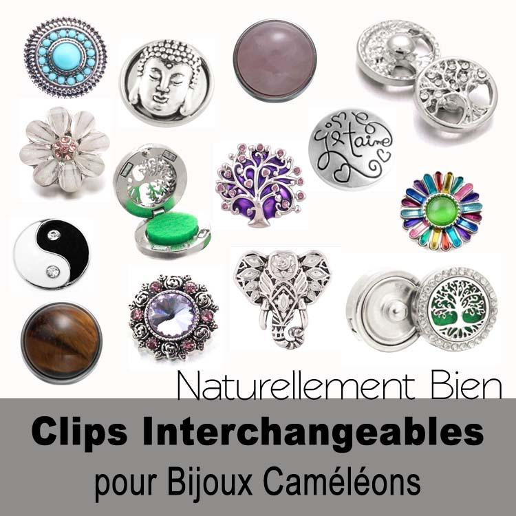 Clips interchangeables pour bijoux caméléons